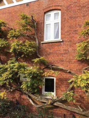 Drvena stolarija u Engleskoj - London